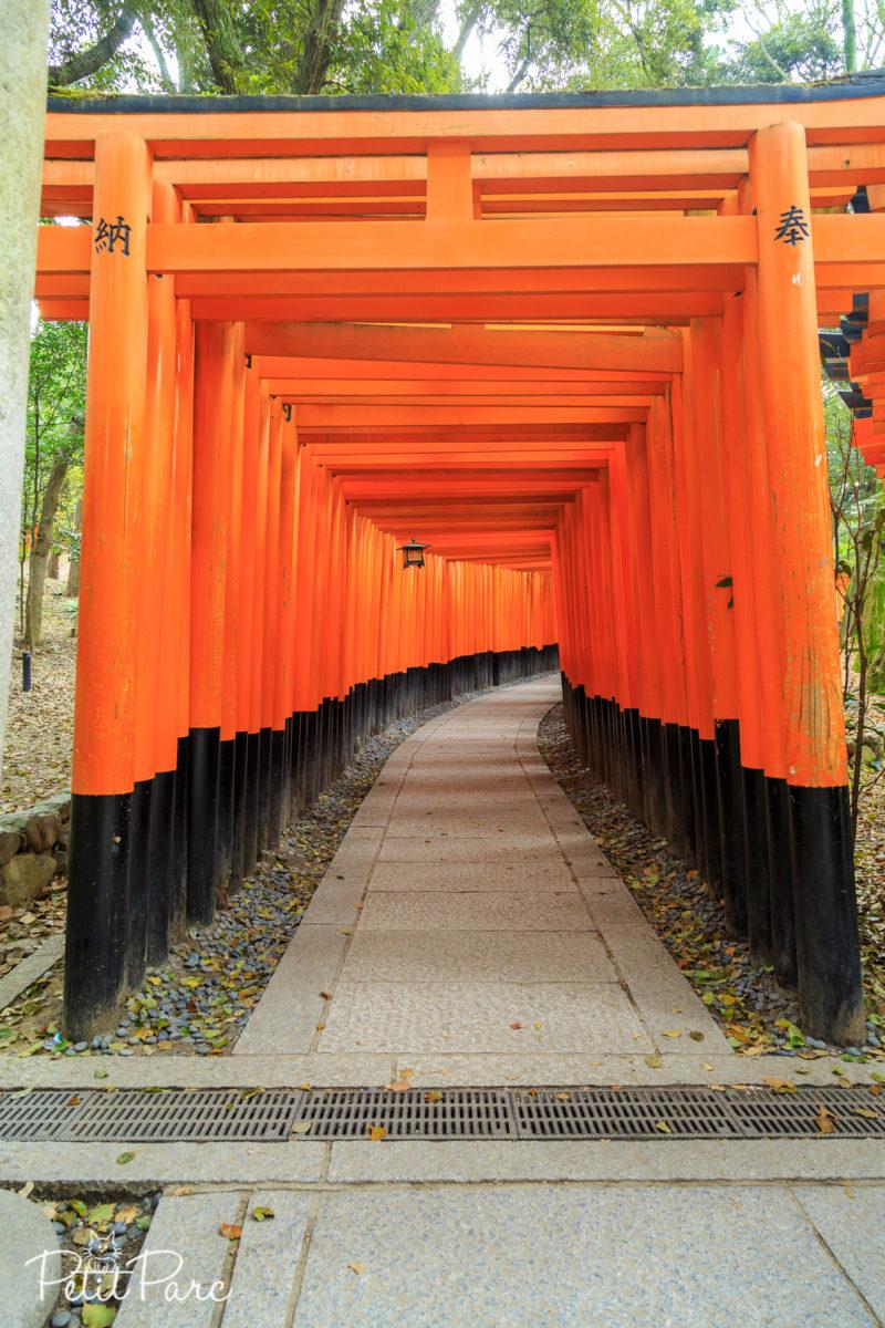 Entrée du Tunnel de torii
