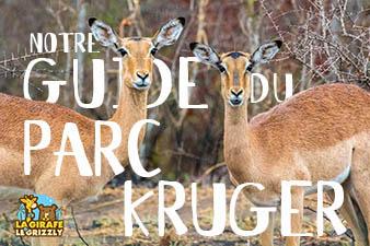 Le guide du Parc Kruger