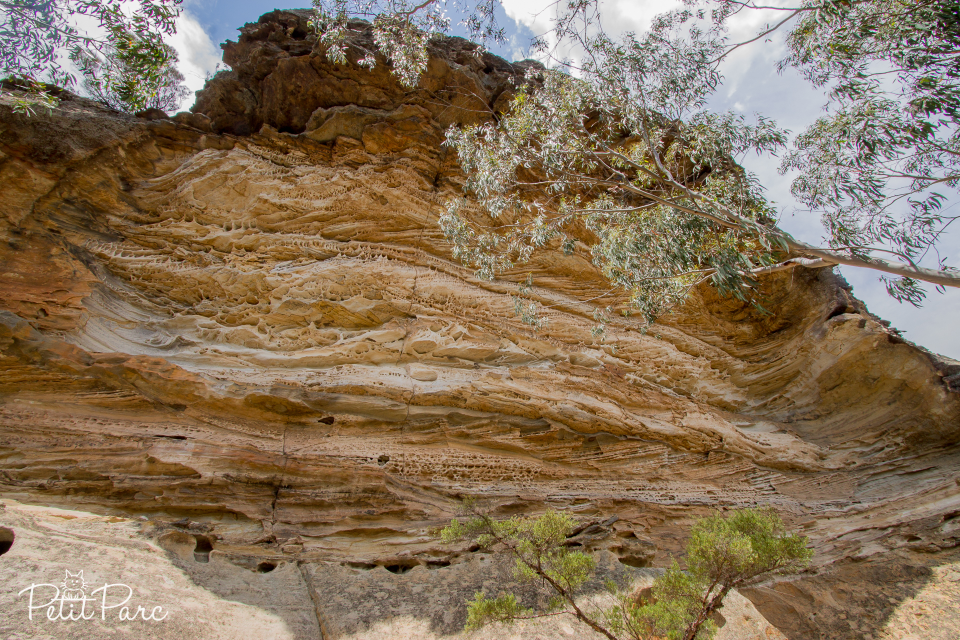 Wind Eroded Cave, Blue Mountains