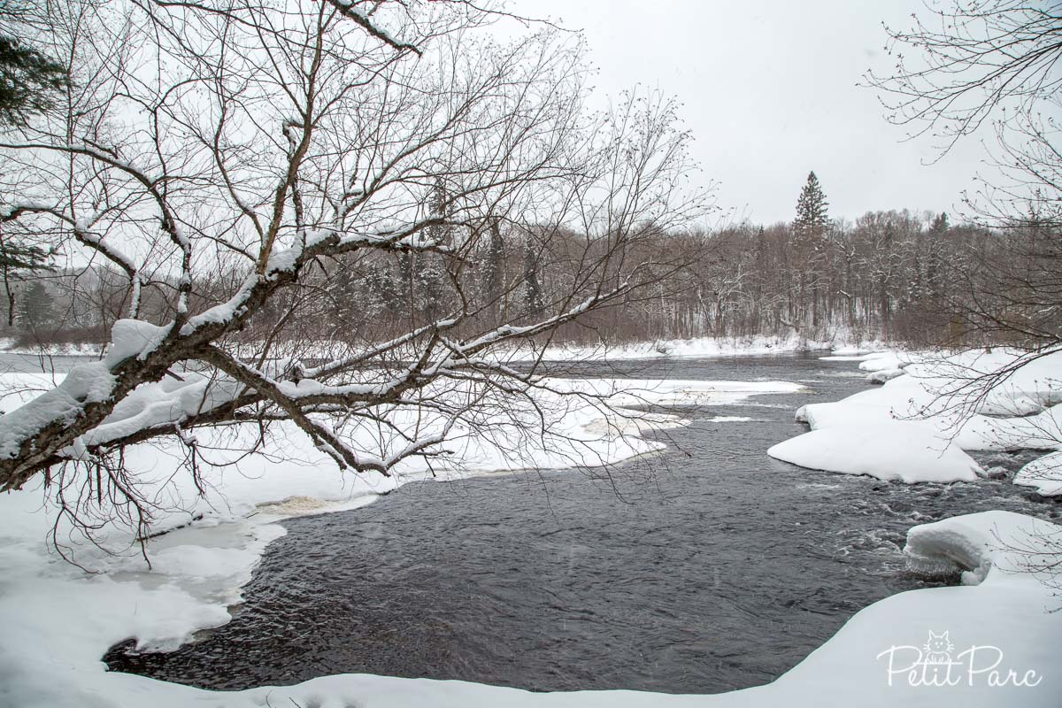 Le parc d'Oxtongue River