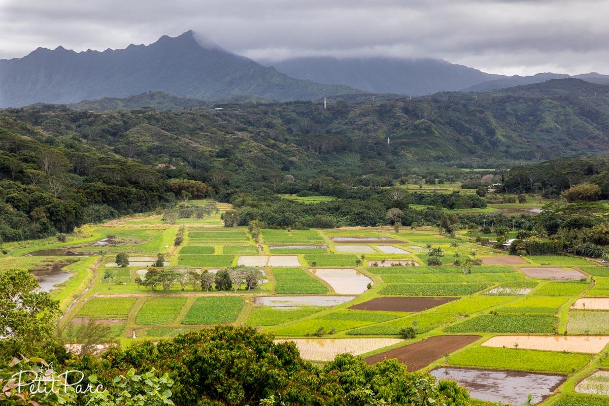 Vallée Hanalei