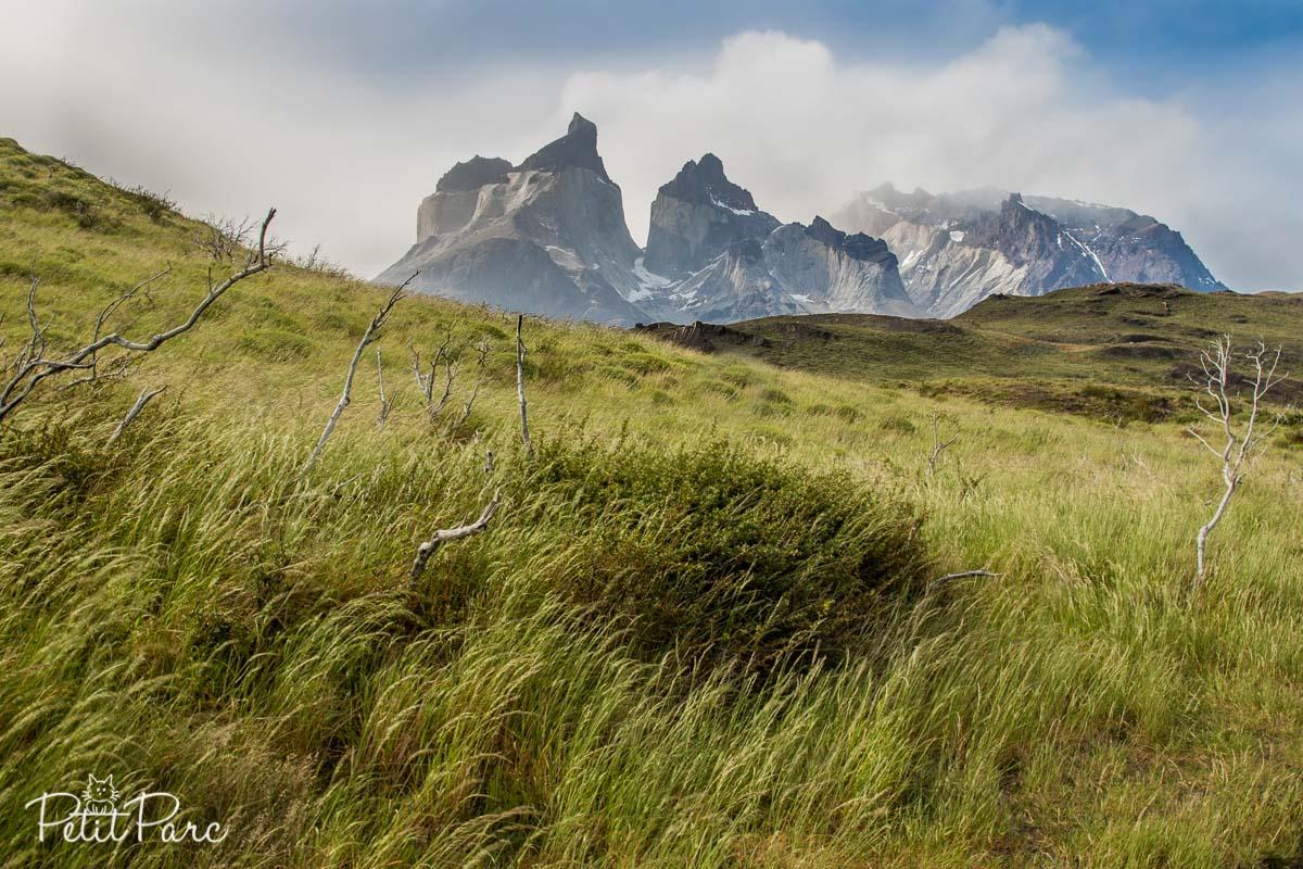 Les montagnes Cuernos depuis Pudeto