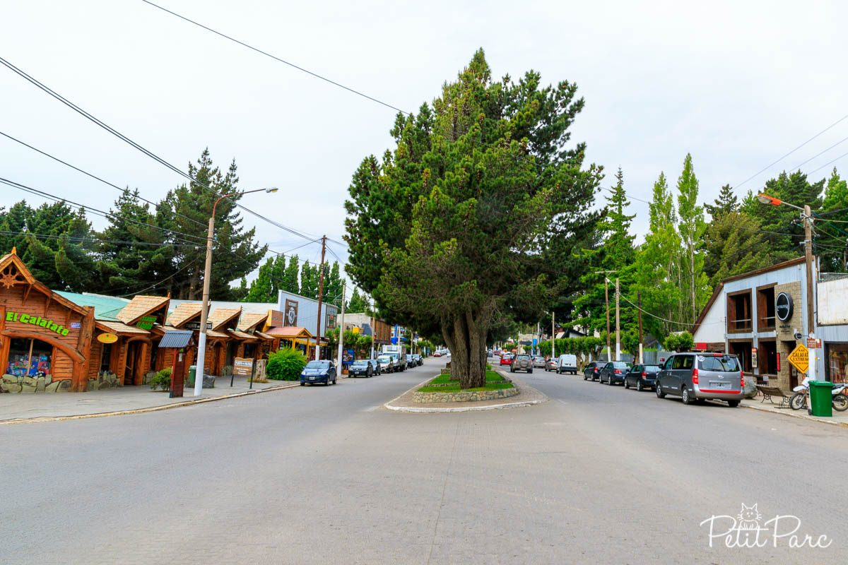 Rue principale d'El Calafate