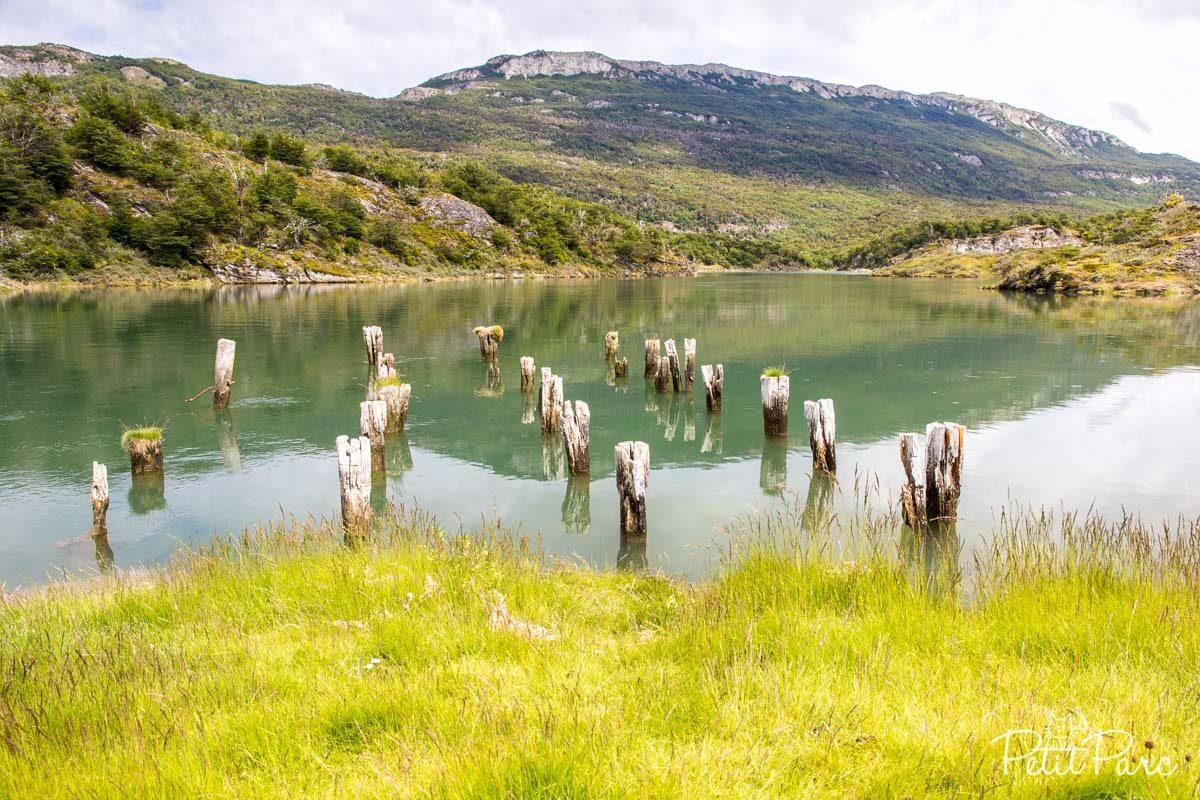 Autour de la Baie Lapataia