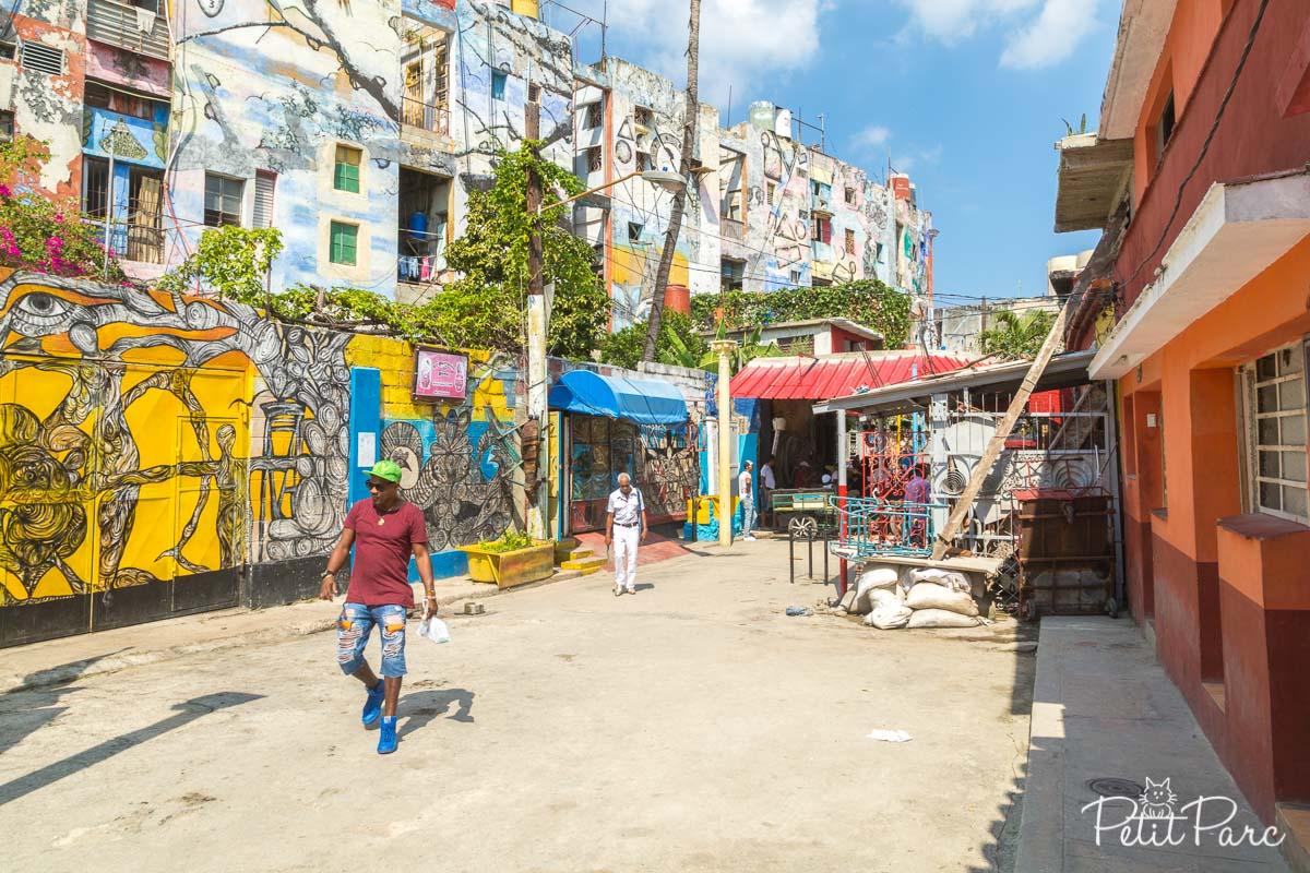 Callejon de Hamel La Havane