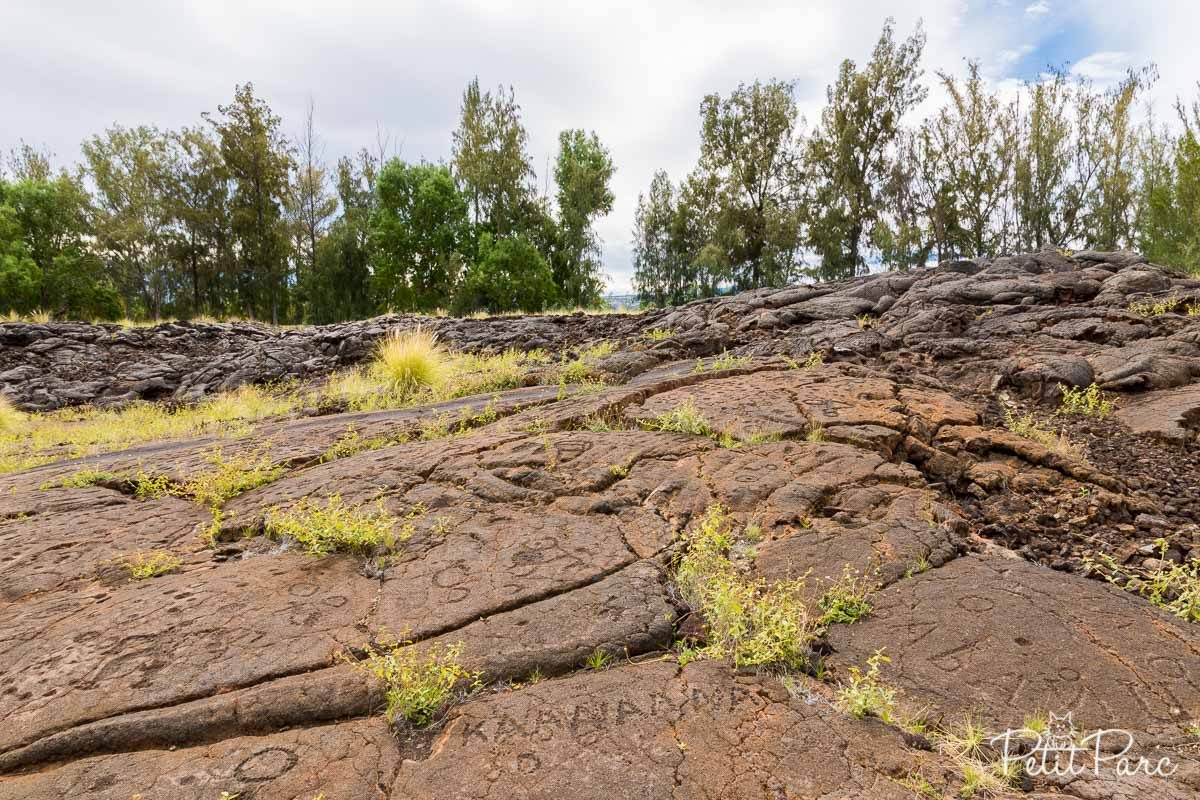 Pétroglyphe à Waikoloa