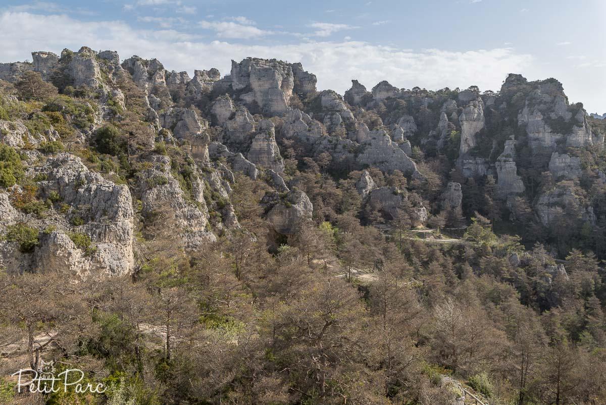 Vue sur le chaos ruiniforme de Montpeliier le Vieux