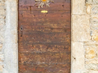Un plante Cardabelle est clouée sur une porte