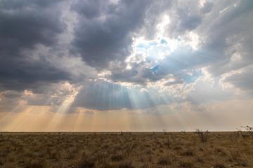 Rayons soleil Etosha
