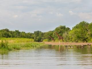 En bâteau sur le Victoria Nile