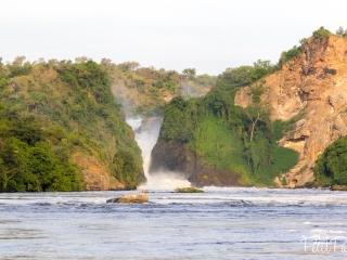 Les chutes Murchison