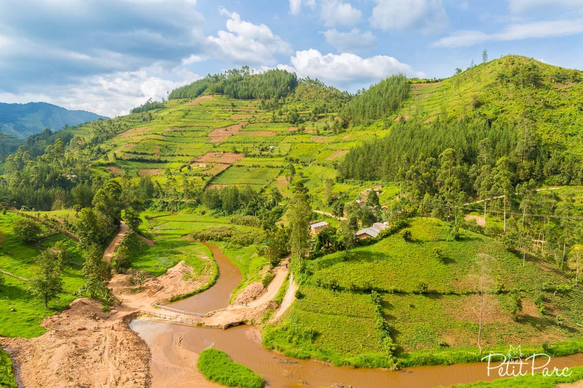 En route vers Bwindi